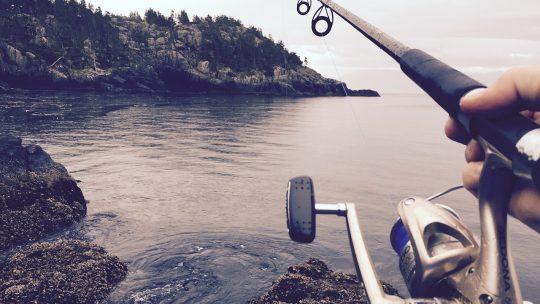 Quels accessoires pour aller à la pêche pour un débutant ?
